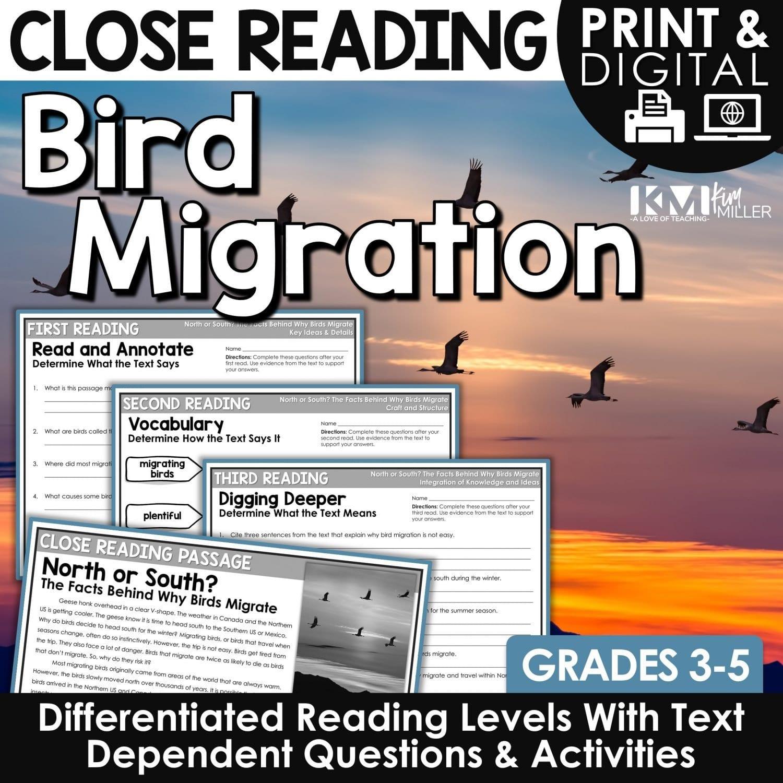 Bird Migration Close Reading